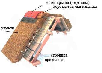 Схема укладки камыша на крышу